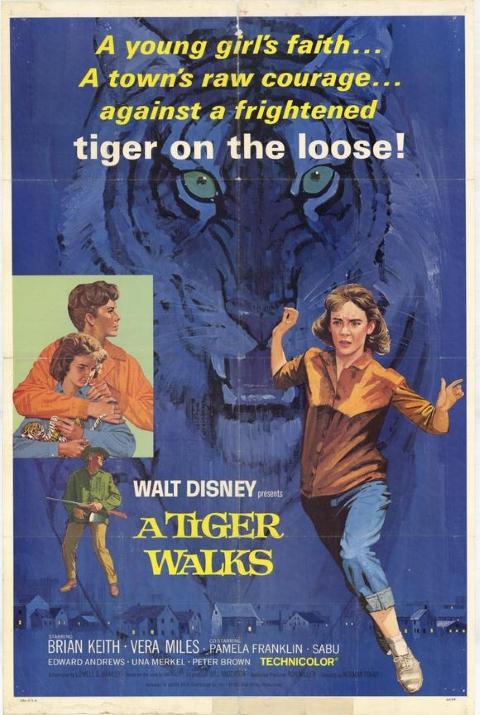 Original theatrical release poster for Walt Disney's A Tiger Walks